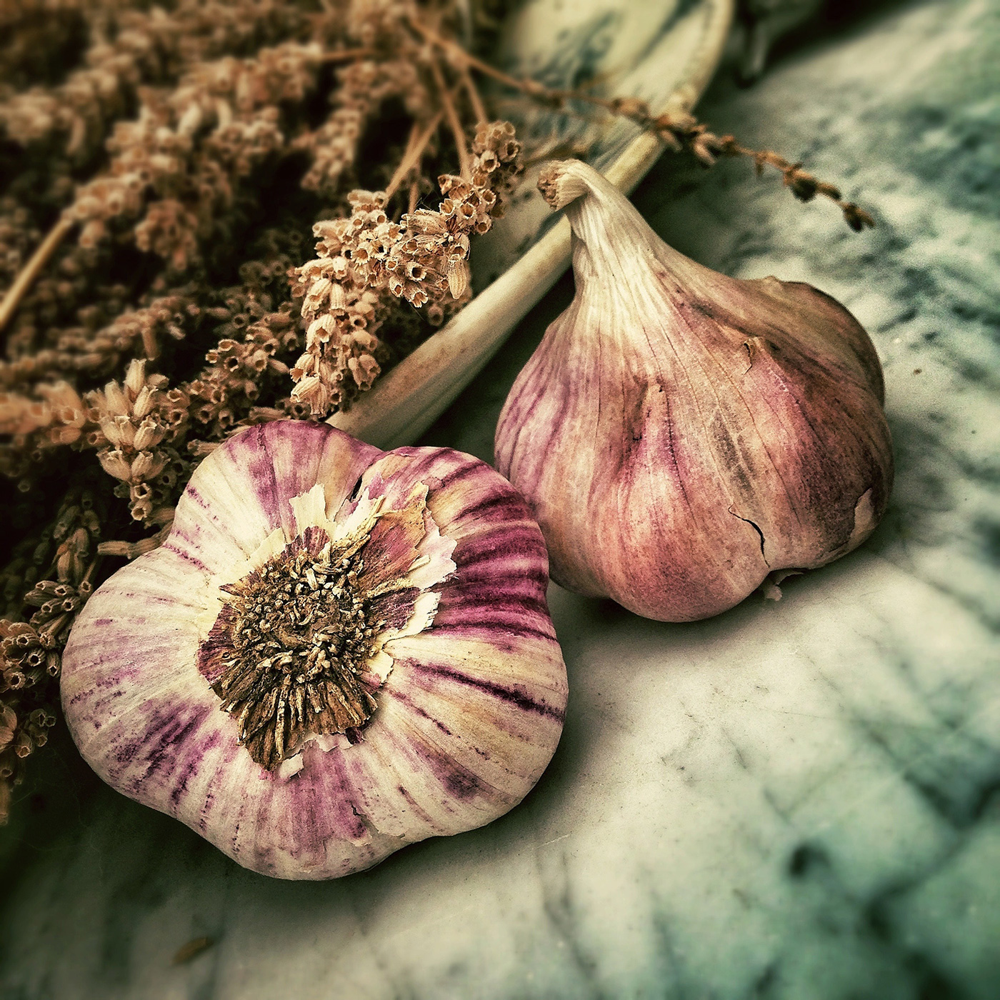 Garlic is my favorite ingredient